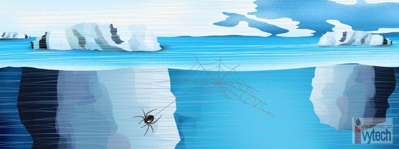 Deep Web и Dark Web - скритото лице на интернет-