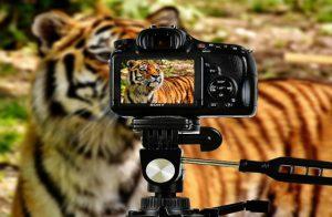 Видео маркетинг, фотография и Youtube канала на Peter McKinnon