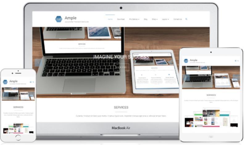 Ample WordPress Theme