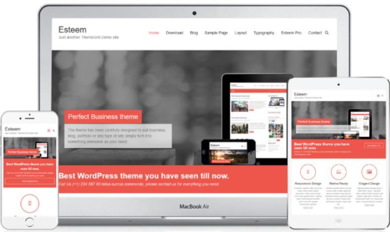 WordPress Theme Esteem