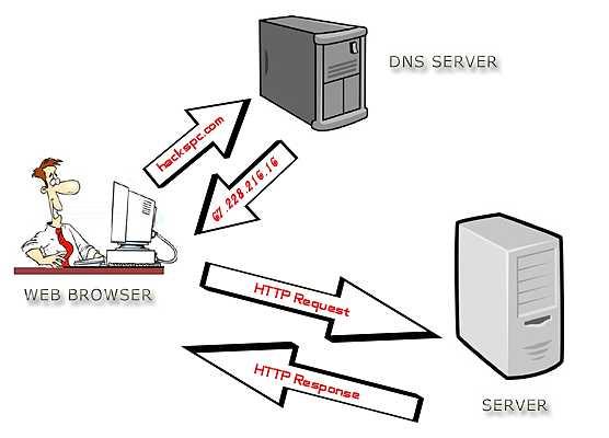 DNS сървърът превежда домейни в IP адреси
